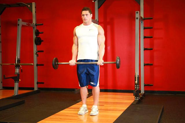 bazovie-yprazneniya-na-biceps 2