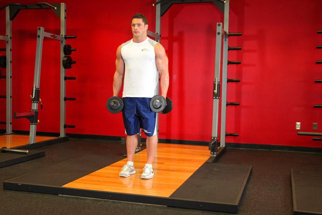 bazovie-yprazneniya-na-biceps 4