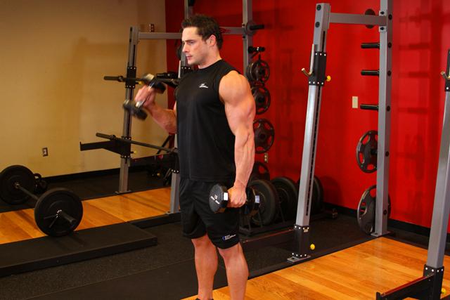 bazovie-yprazneniya-na-biceps 8